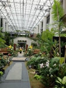 ホテルにあった植物園も香り良くとても素敵でした