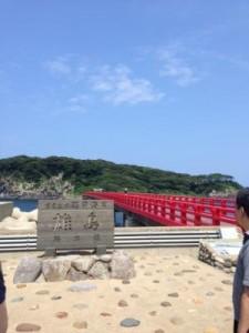 今の時期(7月21日~8月のお盆頃まで)三国の安島にある雄島にわたる橋の上からは海女さんたちがバフンウニを取っている姿が見えます