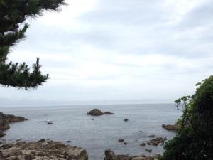 福井県の沿岸は岩場が多く昔からバフンウニがとれる漁場です